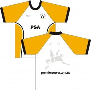 PSA 2011