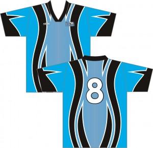 riv 2010 B
