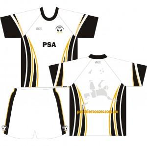 PSA 2011a